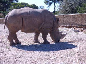 Zoo La Barben