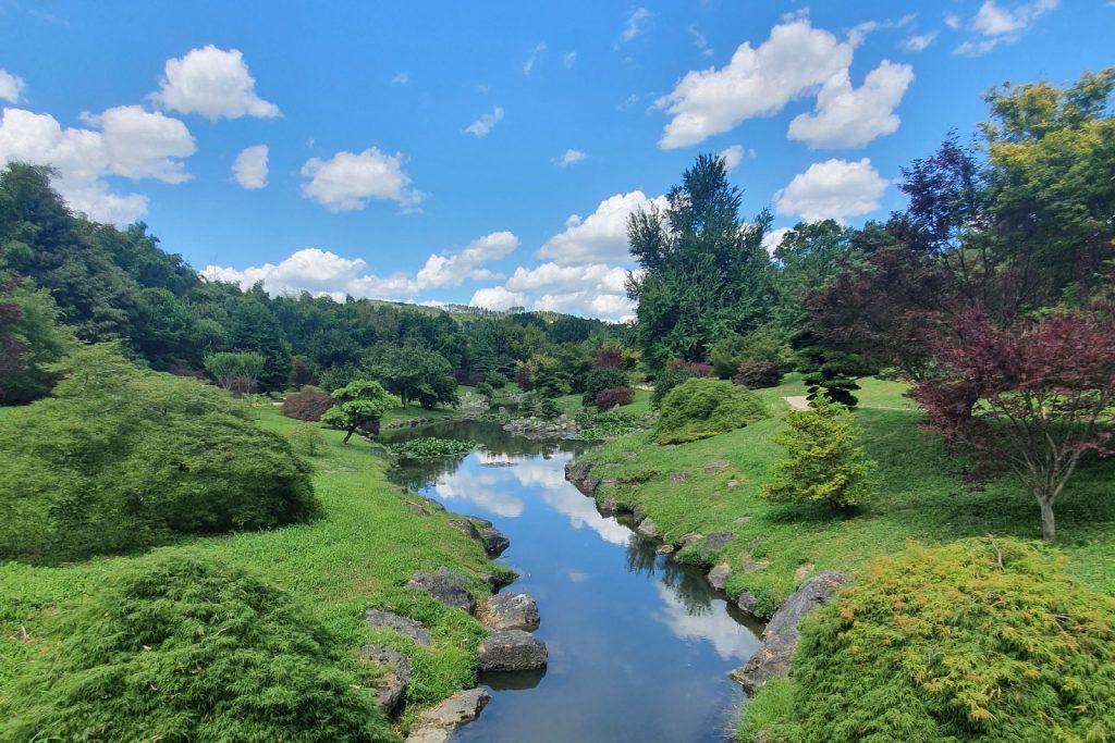 Jardin japonais à la Bambouseraie
